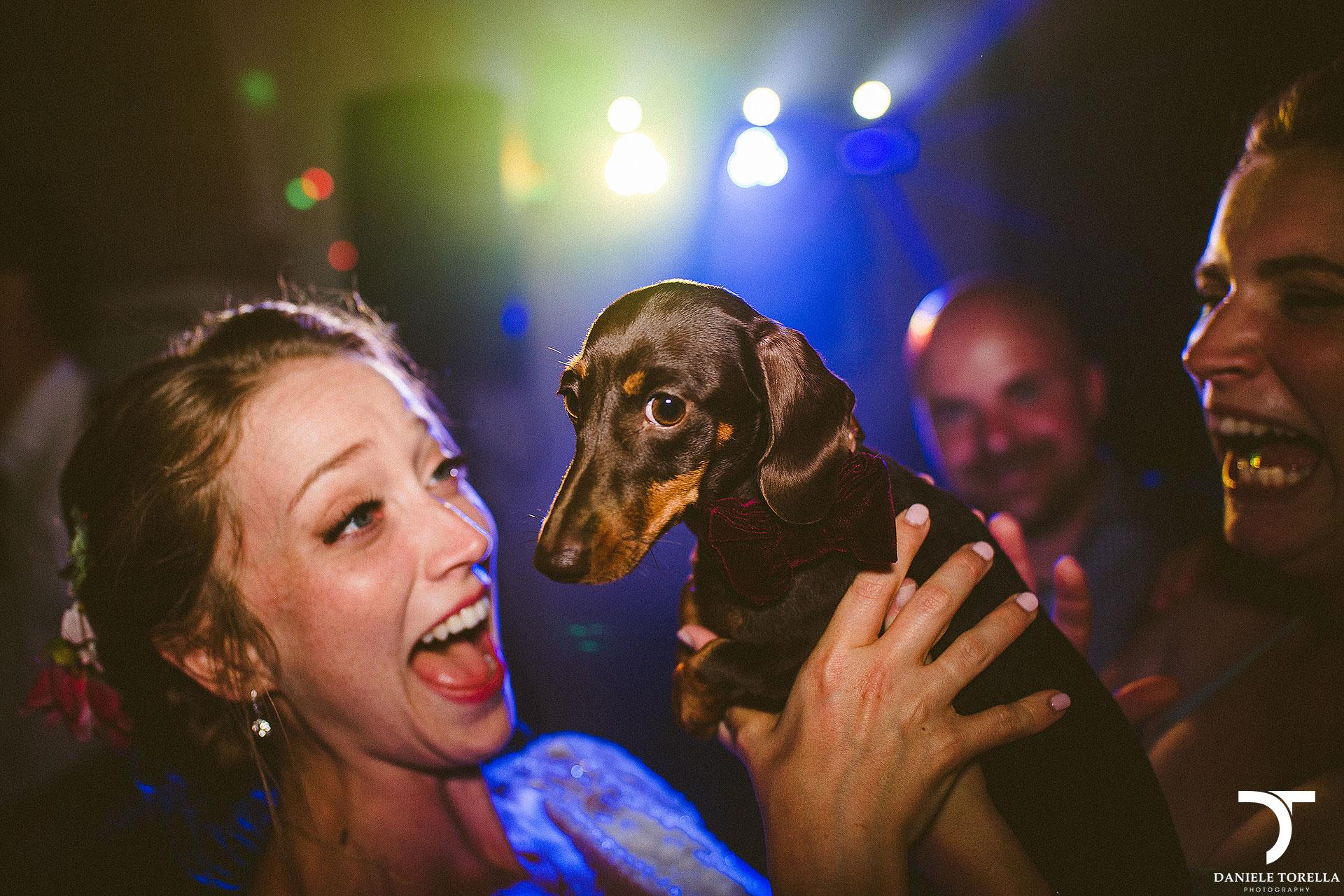 Consigli matrimonio: Musica e orchestra